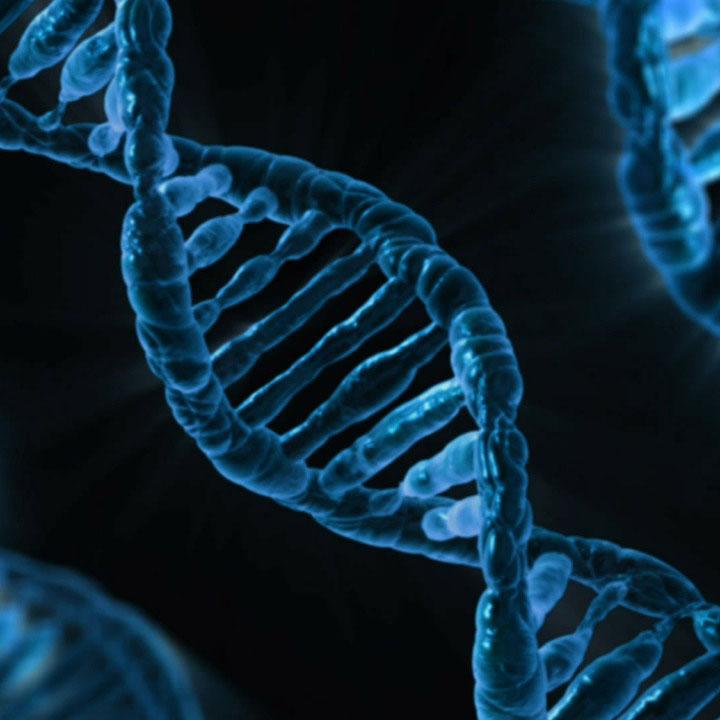 Secuenciación genoma
